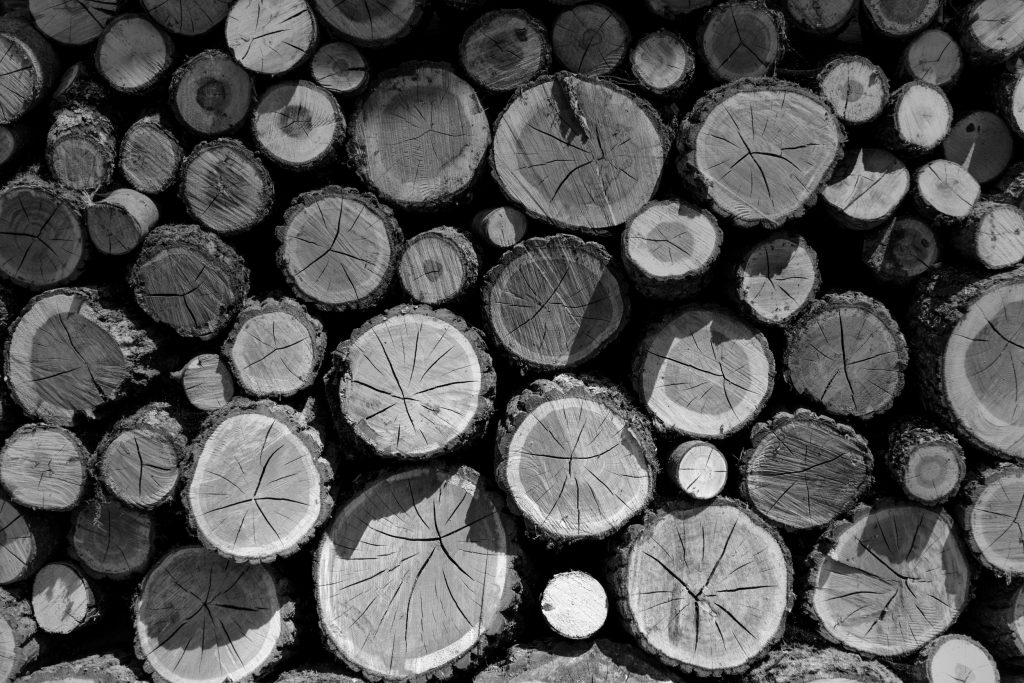 WoodBWDK
